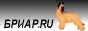 на главную страницу Бриар.RU - выставки, селекции, спортивные соревнования